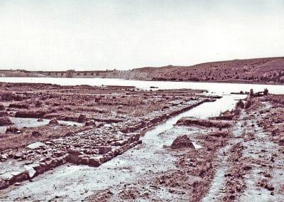 Sevtopolis (4)