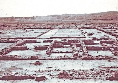 Sevtopolis (5)
